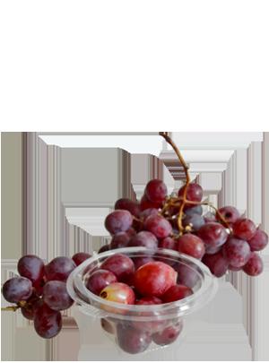 Fruta de calidad
