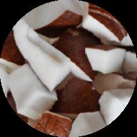 Fruta envasada: coco